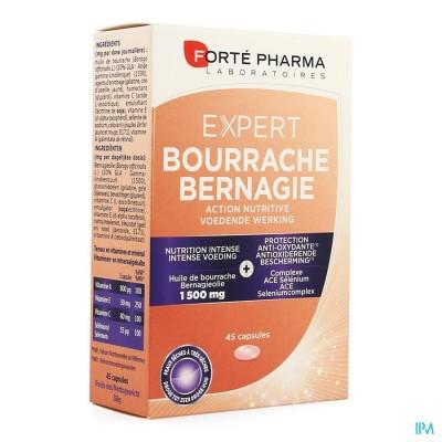 expert bourrache